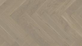 Kalasaba tamm Auster spectrum WP 475